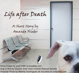 Life after Death, by Amanda Flieder