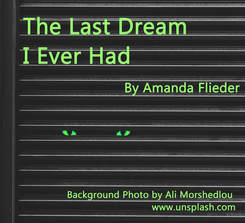 The Last Dream I Ever Had, by Amanda Flieder