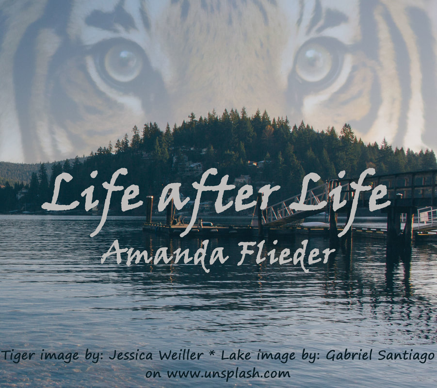 Life after Life, by Amanda Flieder
